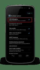 developer_options